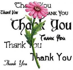 thank you pink flower background